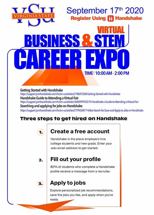 virtual business and stem flyer